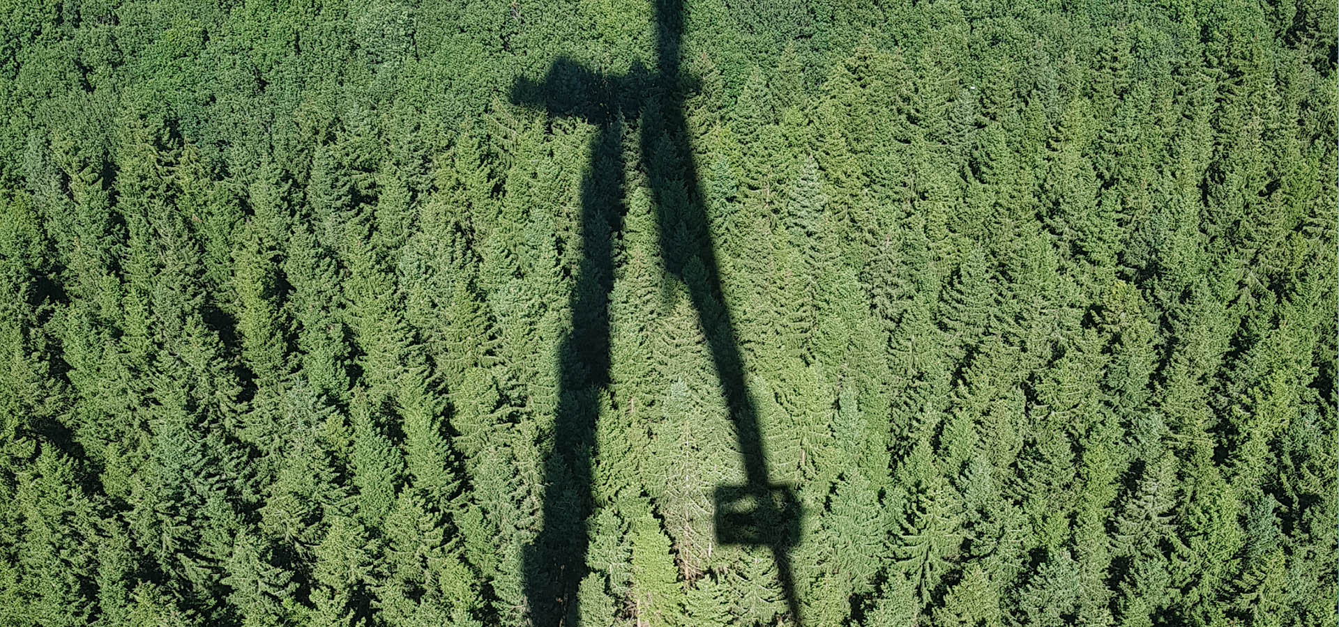 Rotor blade access system terra 1.1 - shadow on a forest under wind turbine.